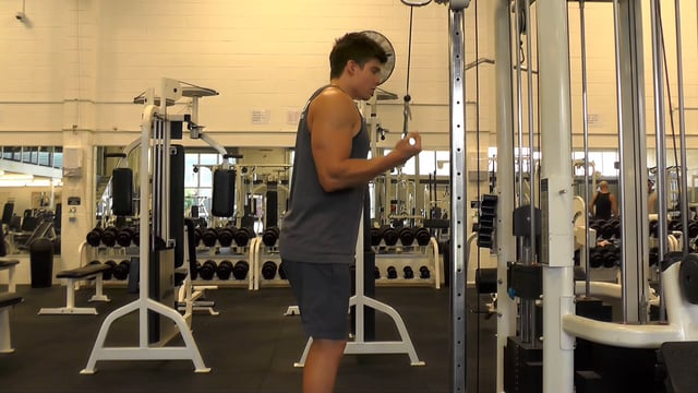 Reverse Grip Cable Tricep Pushdown