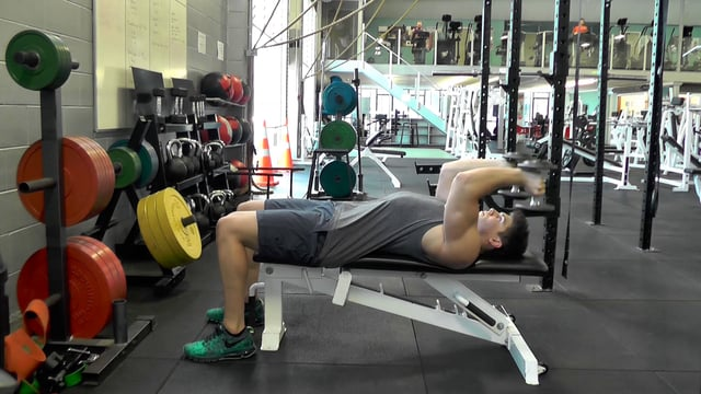 Flat Dumbbell Tricep Extensions