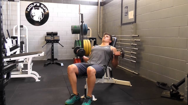 Dumbbell Curl On Incline Bench