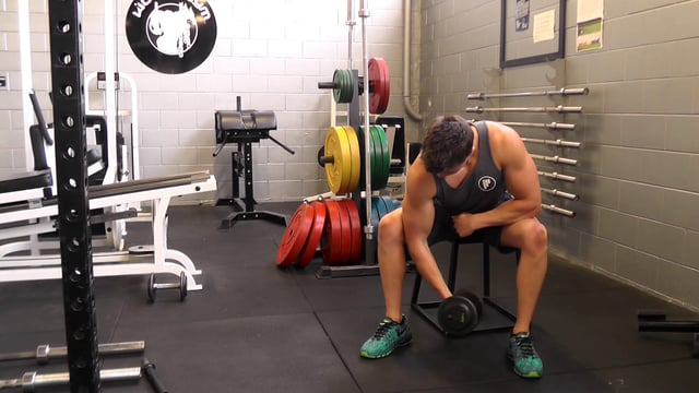 Dumbbell Consentration Curl