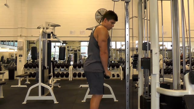Cable Tricep Pushdown With V Bar