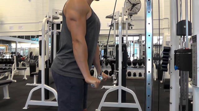 Cable Tricep Pushdown With Straight Bar