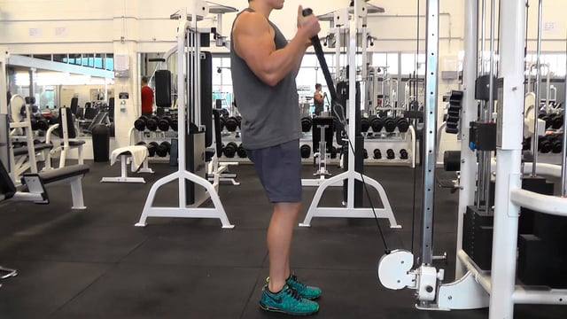 Cable Hammer Curl With Rope