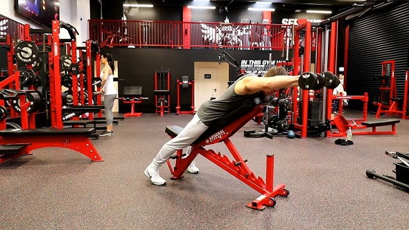 Chest Supported Dumbbell Front Raise