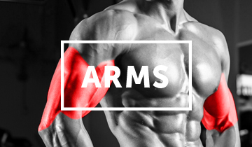 Find all of Iron Playground's HD Arm Exercise Videos here