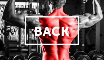 Find all of Iron Playground's HD Back Exercise Videos here