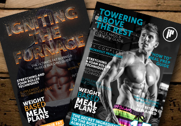 14 week training guides to build muscle and lose fat